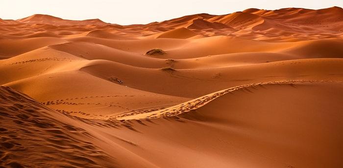 Pustinja Sahara - površina, klima, zanimljivosti