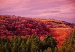 Najlepša mesta u Srbiji – prirodne lepote Srbije koje treba posetiti