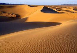 Pustinja Gobi – informacije i zanimljivosti