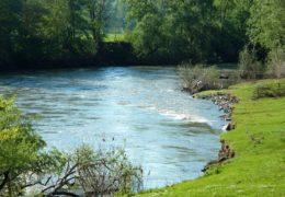 Reka Morava – informacije i zanimljivosti