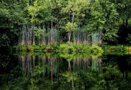 Semeteško jezero – informacije i zanimljivosti