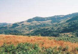 Javor planina – smeštaj, info i zanimljivosti