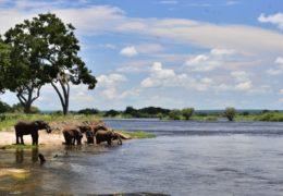 Reka Zambezi – zanimljivosti i informacije