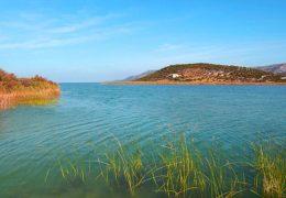 Park prirode Vransko jezero - info i zanimljivosti