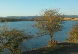 Pavlovačko jezero - info i zanimljivosti