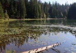 Zminje jezero na Durmitoru - info i zanimljivosti