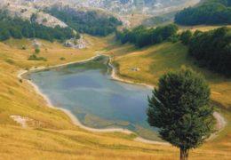Orlovačko jezero - informacije i zanimljivosti