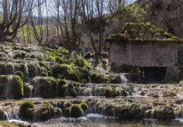 Taorska vrela - informacije i zanimljivosti
